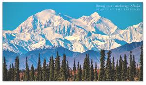 Anchorage, Alaska Zoom Background 1