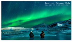 Anchorage, Alaska Zoom Background 2