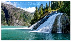 Anchorage, Alaska Zoom Background 3