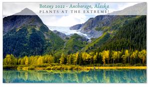 Anchorage, Alaska Zoom Background 4