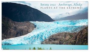 Anchorage, Alaska Zoom Background 6