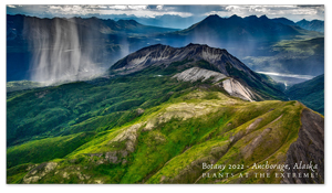 Anchorage, Alaska Zoom Background 8