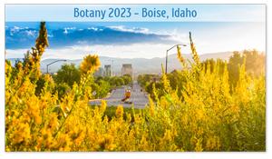 Boise, Idaho Zoom Background 9