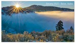 Boise, Idaho Zoom Background 6