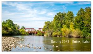 Boise, Idaho Zoom Background 7