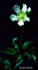 Image 08-064
