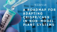 Picture 0 for A Roadmap for Adapting CRISPR/Cas9 in Non-model Plant Systems